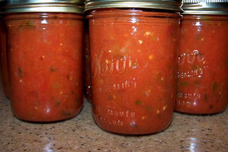 Fresh Canned Salsa | Canning isn't too scary once you understand the science. It's also a great project to do with friends to split the work and the bounty.