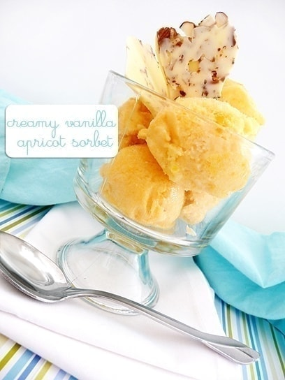 Vanilla Apricot Sorbet with White Chocolate Almond Bark | This Creamy Vanilla Apricot Sorbet turned out to be a great lighter summer dessert. For added flair, I made some white chocolate almond bark pieces to garnish the sorbet with.