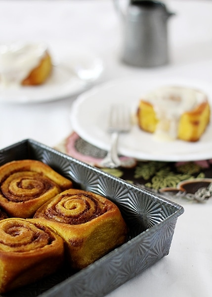 Pumpkin Cinnamon Rolls are the perfect fall treat – pumpkin spice dough is rolled with plenty of cinnamon and sugar, and then slathered in cream cheese frosting.