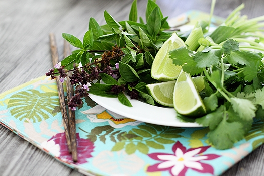 asian herbs for vietnamese noodle soup