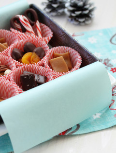 Chocolate Covered Vanilla Fleur de Sel Caramels