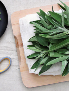how to chiffonade herbs with scissors