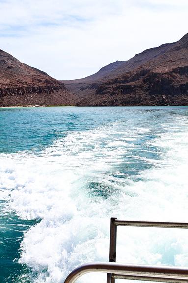 boat isla espiritu santo