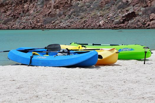 kayak isla espiritu santo la paz