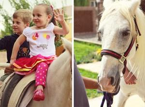 carnival party pony rental