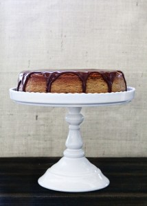 Chocolate Pumpkin Cheesecake Recipe
