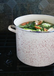homemade turkey broth thanksgiving