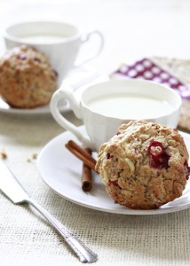 Rustic Apple Cranberry and Oatmeal Muffin