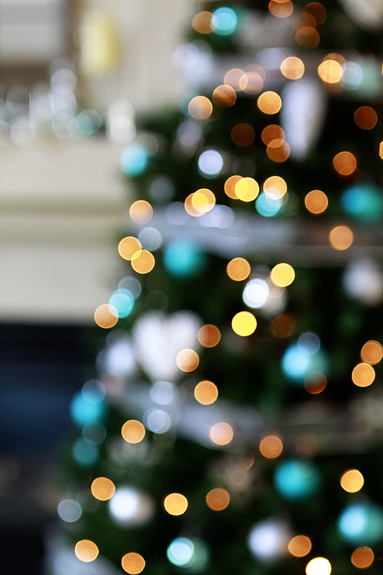 christmas tree bokeh pictures