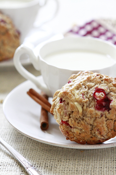 rustic cranberry apple oatmeal muffin