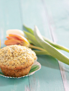 coconut lemon poppyseed muffin recipe