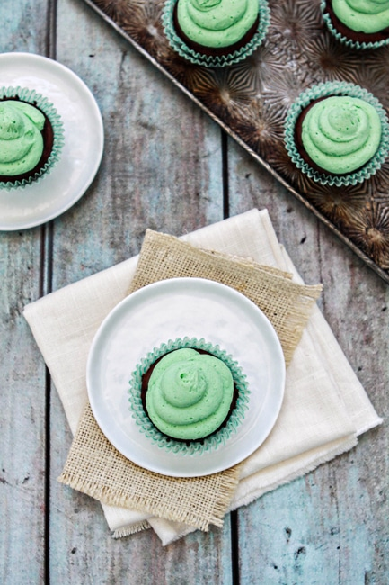 chocolate-mint-cupcake.jpg