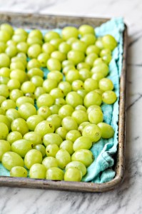 Frozen Grapes on Cookie Sheet