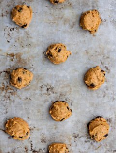 Pumpkin Chocolate Chip Cookie Smores
