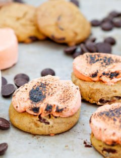 Pumpkin Chocolate Chip Cookie Smores