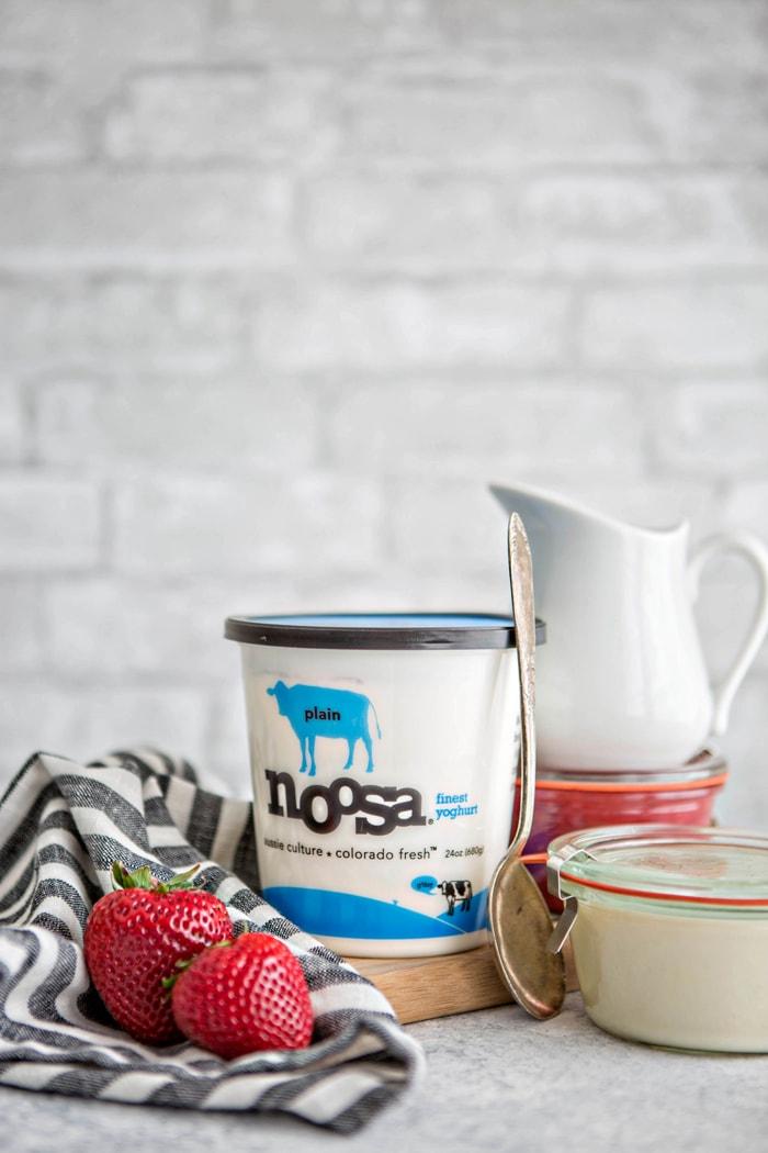No Churn Vanilla Frozen Yogurt with Balsamic Roasted Strawberry Rhubarb