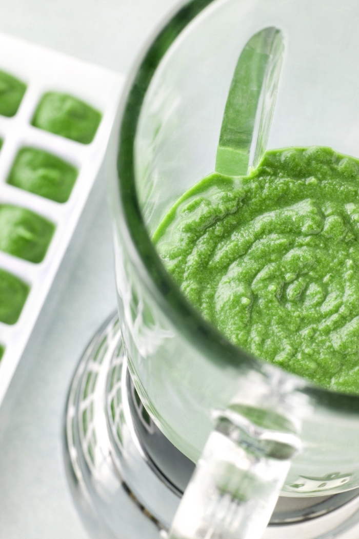 blender with pureed spinach